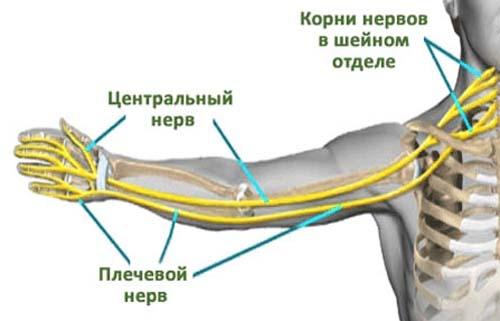 valu sormeotste liigestes, kuidas ravida Kuidas siduda punase niidi randmele valu liigestes