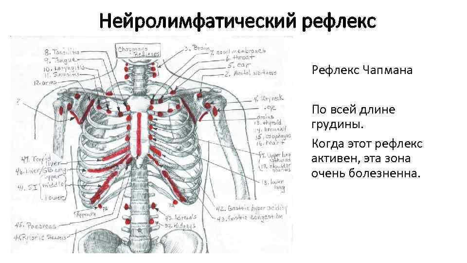 Liigeste haigused. Havitamine valu polveliigese pohjustes ja kuidas ravida