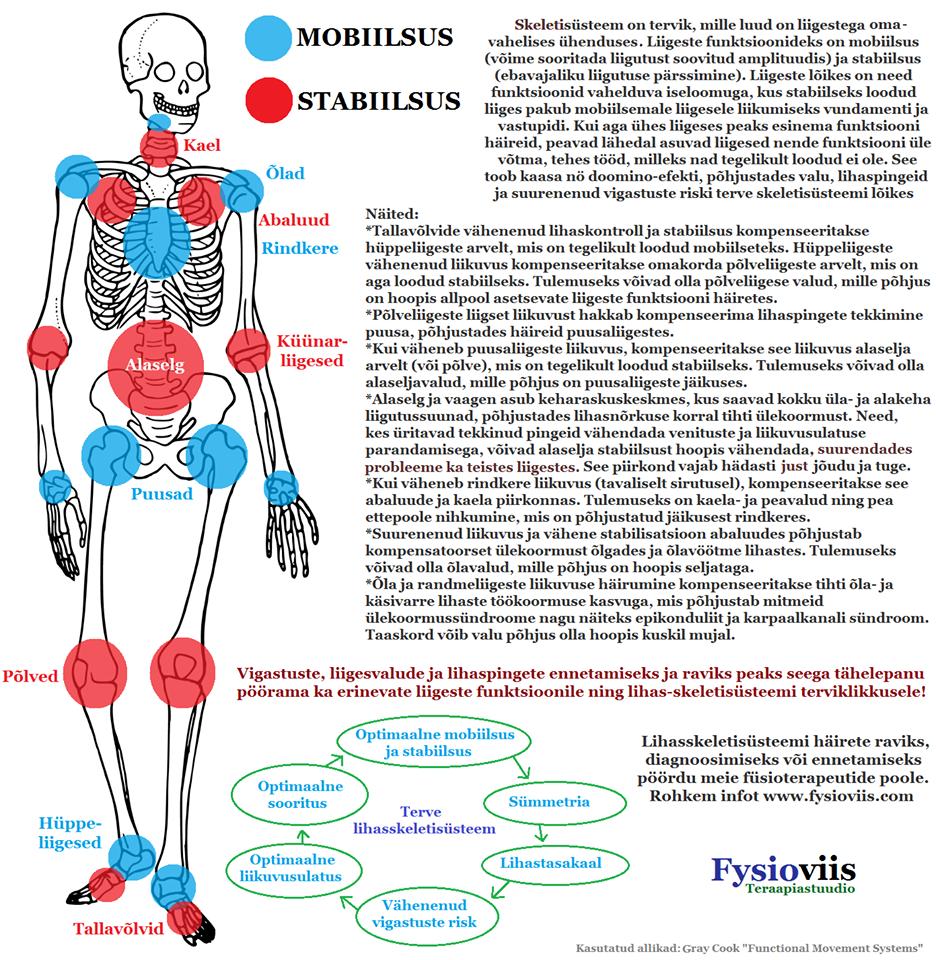 Sinelnikovi polve valus Kuidas teha kindlaks, mida liigesed valus