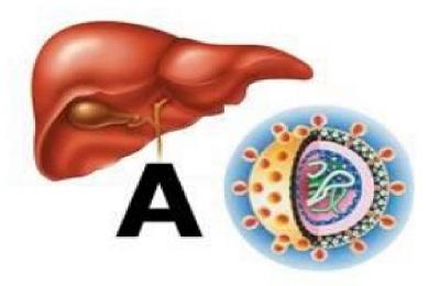 Hepatiidi valu uhine