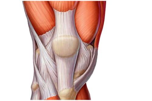 Toetab jalgadel haiget, kuidas tugevdada
