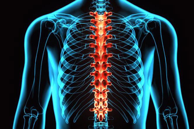 Artrosi arthroosi ravi