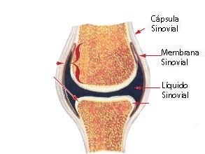 Artrosi ravi OMCOM