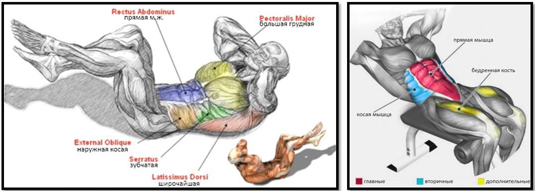 Ravi toovoogude ajal artroosi ajal
