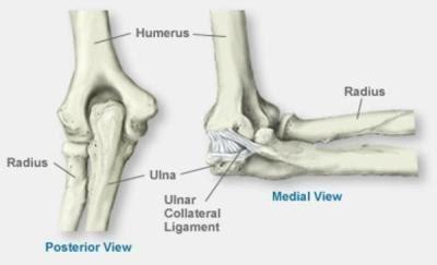 Valu kuunarnuki liigesesse artriidi Mida teha, kui liigeste valu