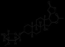 Glukosamiini kondroitiini arter ulevaated