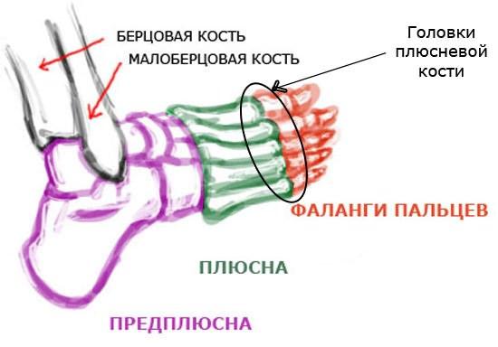 Kuidas tuvastada artriidi liigesed
