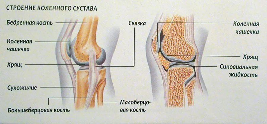 kus Venerealsed haigused valulikud liigesed