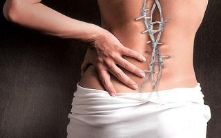 Liigendid ja osteokondroos