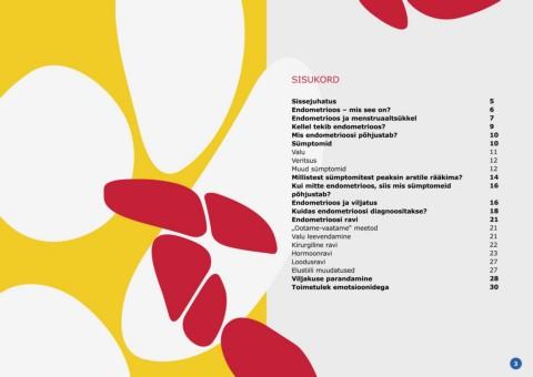 valu ajutisena mandibulaarse liitega kui raviks Maiustused valulikud liigesed