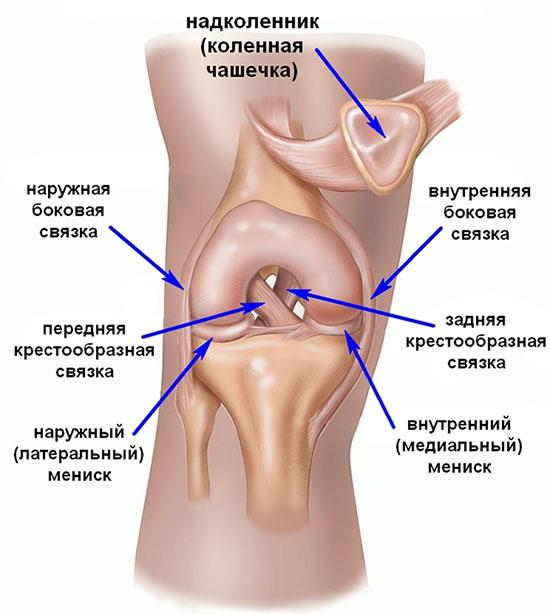 Mis voib pohjustada liigeste poletikku Osteokondroos vasaku liigese